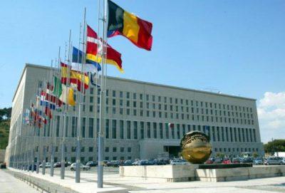 Convegno: l'azione dell'Onu
