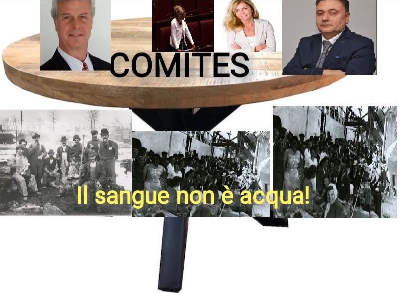 Indagine nei Comites e CGIE: Servono? Ritardi, costi elevati e poca reale utilità