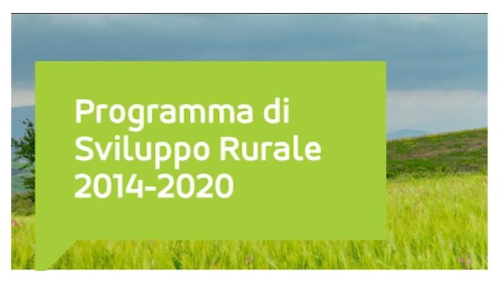 Sviluppo rurale: nel 2020 erogati oltre 3 miliardi di euro alle imprese agricole