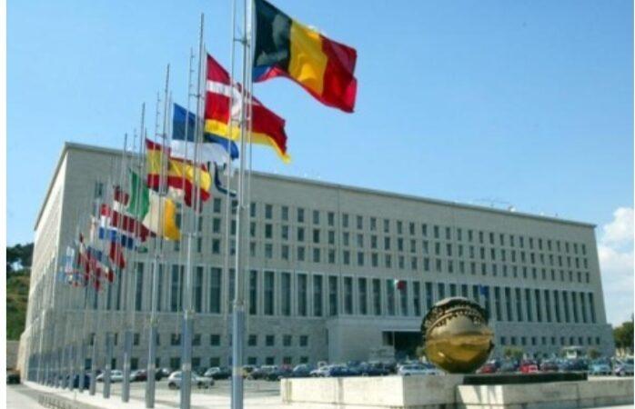 L' Italia condanna con fermezza l'attacco nei confronti del ministro dell'interno ad opera di Fathi Bashagha