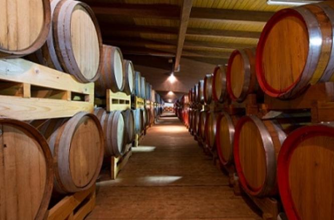 La Slovenia attacca l'aceto balsamico Made in Italy Reagiscono i consorzi