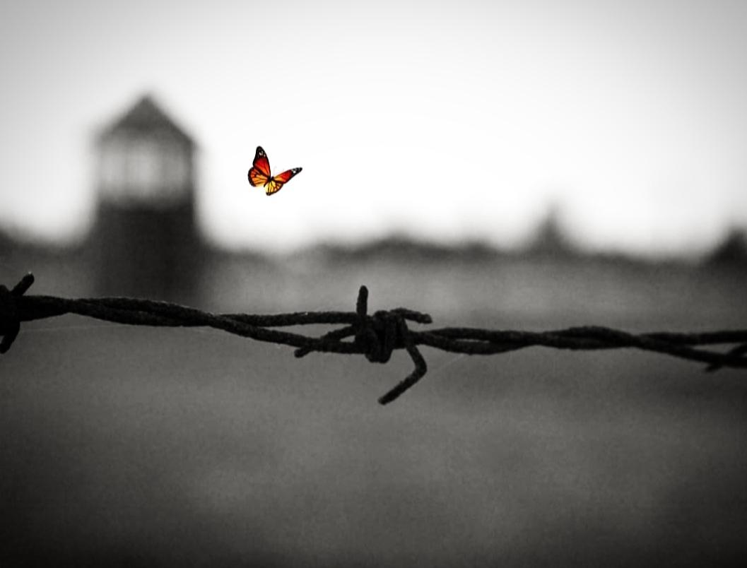 La vita ha sempre la struttura di una promessa
