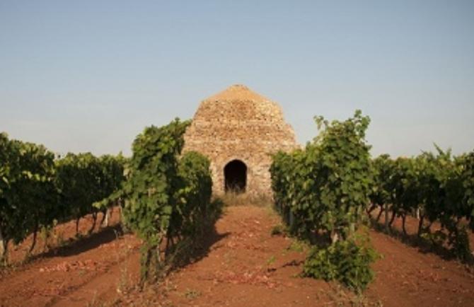 Turismo del vino in Italia:al senato la presentazione del volume Di Stefano e Cinelli Colombini