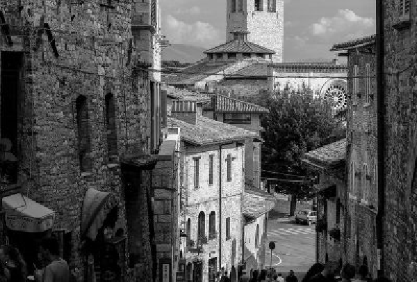 La passione per l'italiano di Jhumpa Lahiri e la traduzione letteraria come creatività