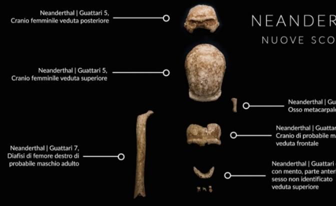 Neanderthal: dalla Grotta Guattari nuove incredibili scoperte