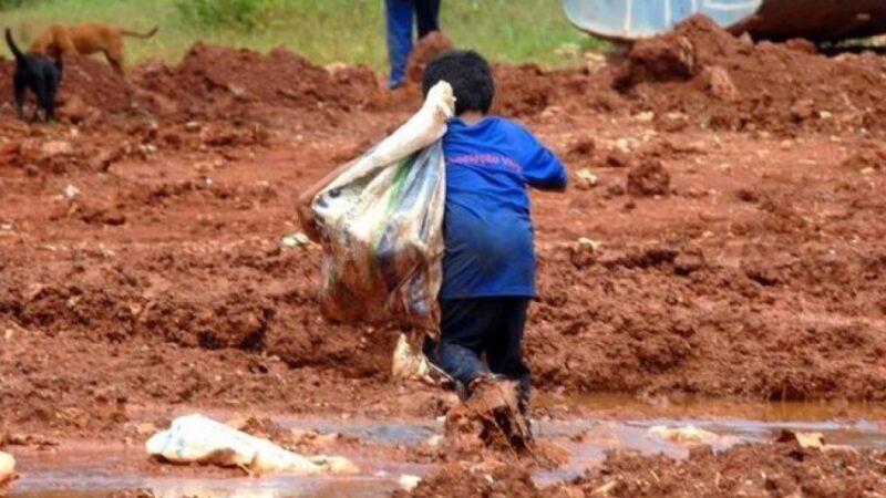 Lavoro minorile: la black list dal riso alle nocciole