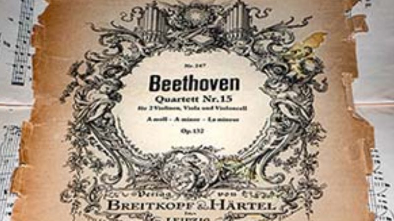 Danza e musica al Teatro dell'Opera per omaggiare Beethoven