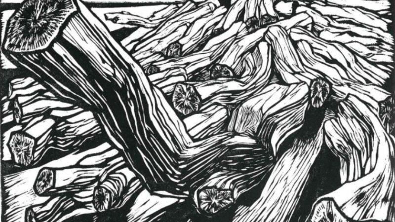 Al di là del mare: antologica di Duilio Cambellotti a Terracina