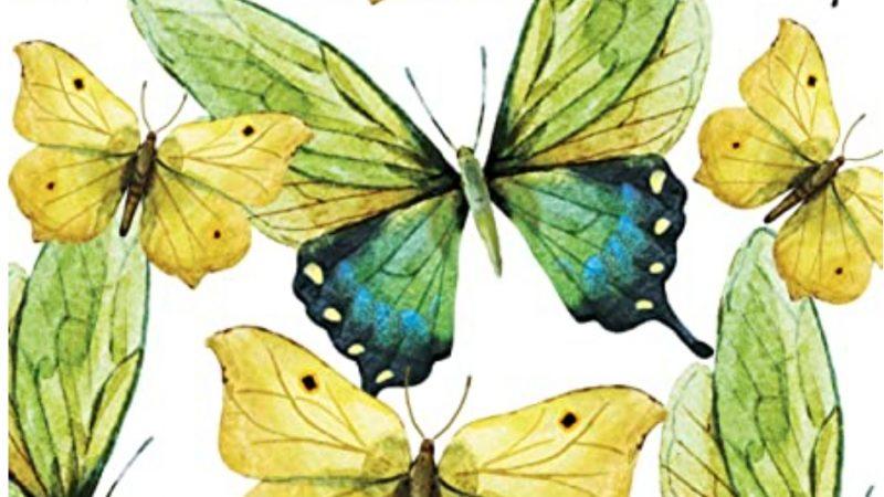 Le ali gialle e verdi