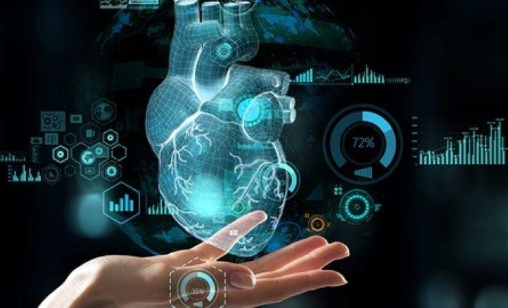 """""""Alternative"""": un modello per studiare l'effetto degli inquinanti sul tessuto cardiaco"""
